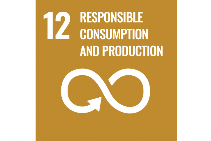 12 - Responsbile Consumption and production