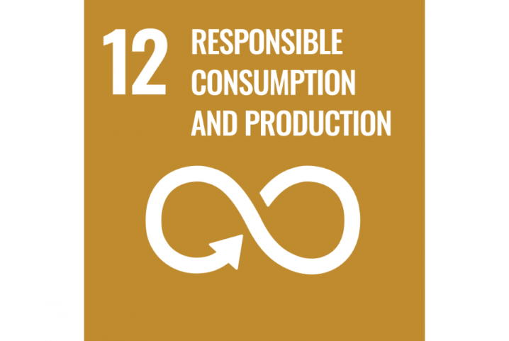 12 - Responsible Consumption and production